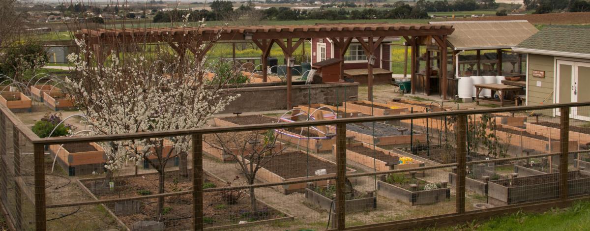 Rancho Cielo Leadership Garden
