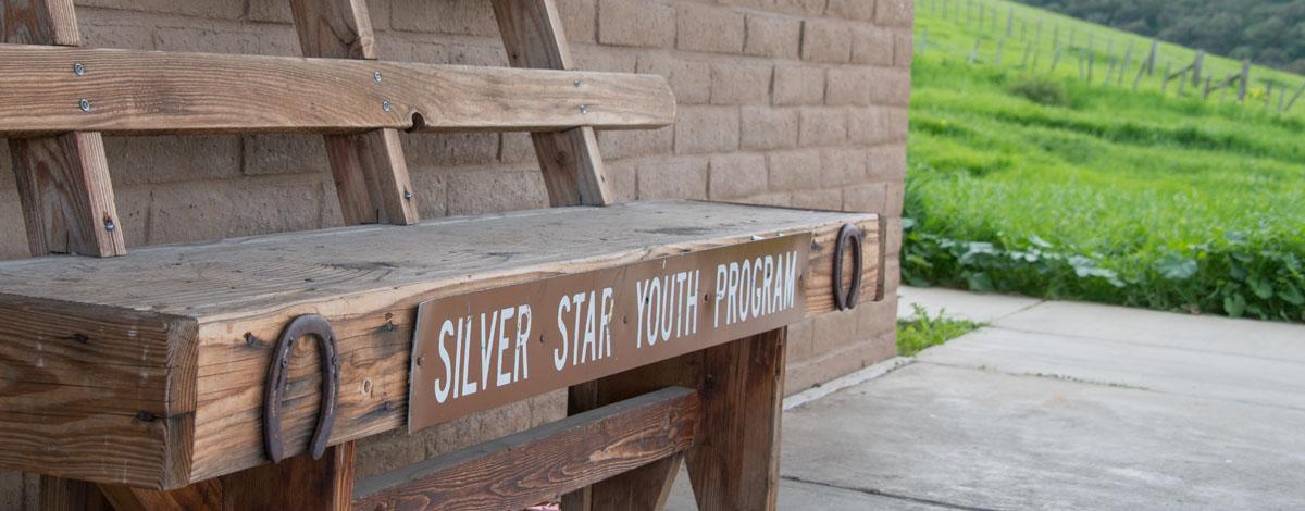 Silver Star Bench